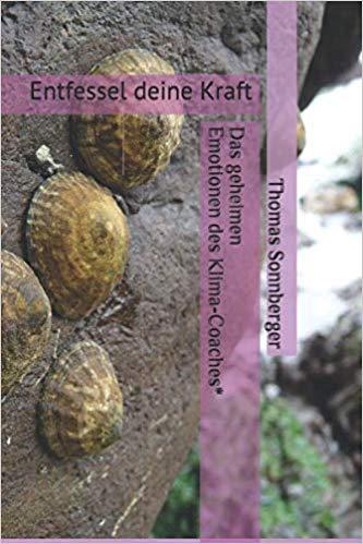 Poster Muscheln